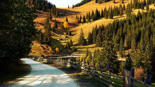 Image result for transilvania