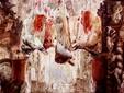 Altar - Gheorghe Fikl