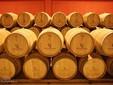 La cantina dei vini Budureasca - Dealu Mare