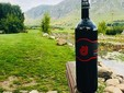 Jelna Wine Cellar - Transylvania
