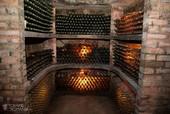 Logos or Plebanos Wine Cellars - Transylvania