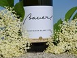 Bauer Winery