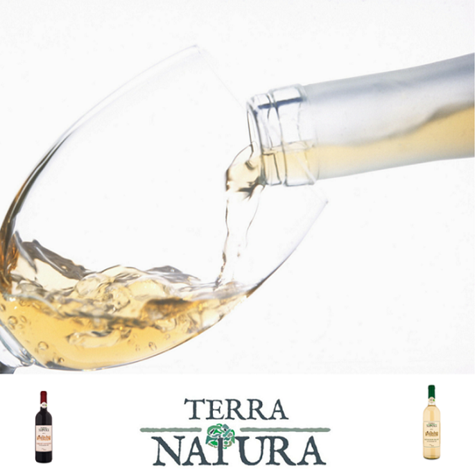 Terra Natura wine Cellar