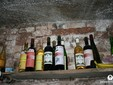 Satu - Mare wine road, Transylvania