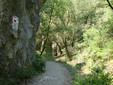Sentiero nelle Gole di Turda - Transilvania