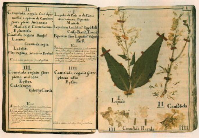 Cartea plantelor