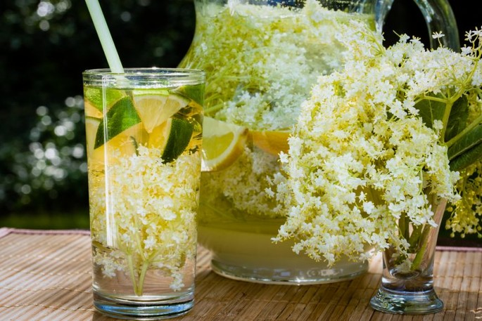 Elder Flower Juice - Socata, the  Romanian traditional drinks