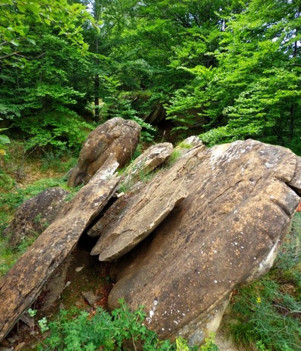 """Trovanţii"" or ""the living stones"" of Bozioru, in Buzau District"