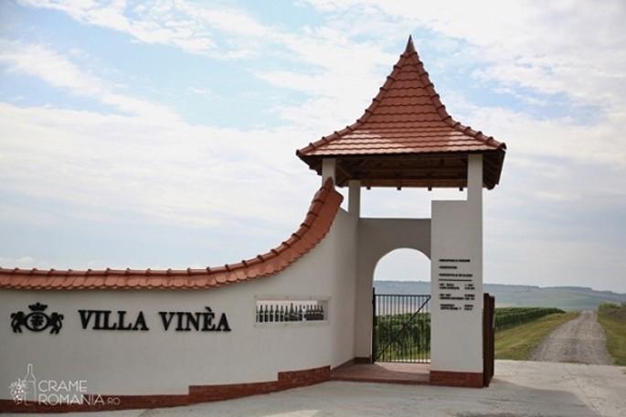 Villa Vinea Wine Cellar - Transylvania