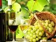 Vini moldavi
