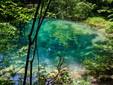 Il Lago l'Occhio del Bey - Parco Nazionale le Gole di Nera - Beusnita, distretto di Caras-Severin