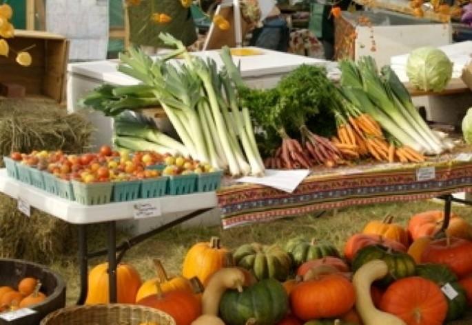 [Translate to Italiano:] Slow food