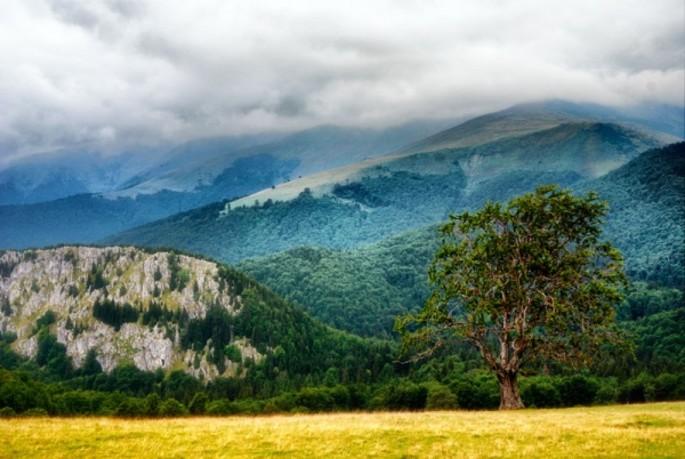 Il picco Gugu -  Monti Godeanu